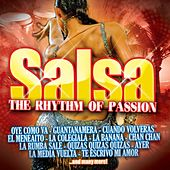 Salsa the Rhythm of Passion von Various Artists