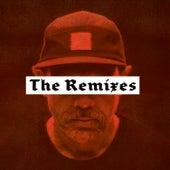 Der letzte seiner Art - The Remixes by DJ Stlyewarz