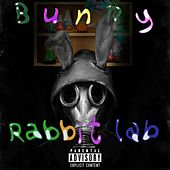 Rabbit Lab de Bunny