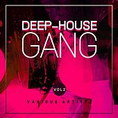 Deep-House Gang, Vol. 2 by Various Artists