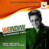 We Indian by Amar Desai