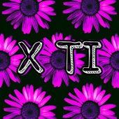X Ti von Roolz