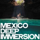 Mexico Deep Immersion de Various Artists