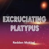 Excruciating Platypus by Redden Mokbel