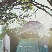 Sequoia by Nora Van Elken