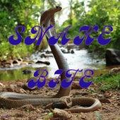 Snake bite by Sawa