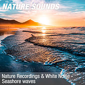 Nature Recordings & White Noise - Seashore waves by Nature Sounds (1)