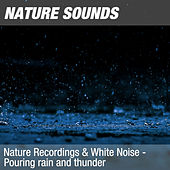Nature Recordings & White Noise - Pouring rain and thunder by Nature Sounds (1)