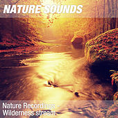 Nature Recordings - Wilderness stream by Nature Sounds (1)