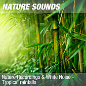 Nature Recordings & White Noise - Tropical rainfalls by Nature Sounds (1)