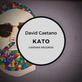 Kato de David Caetano