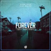 Forever (Jack Laboz Remix) von Disco Fries