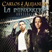 La Introducción...Continued by Carlos Y Alejandra
