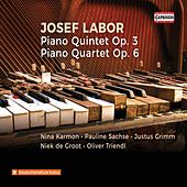 Labor: Piano Quintet in E Minor, Op. 3 & Piano Quartet in C Major, Op. 6 de Nina Karmon