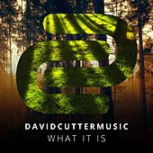 What It Is by David Cutter Music