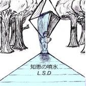 知恵の噴水 von L.S.D.
