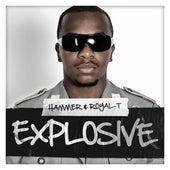 Explosive von Hammer