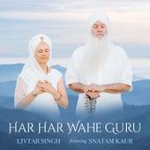 Har Har Wahe Guru de Livtar Singh