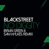 No Diggity (Sam Wilkes & Brian Green Remix) by Blackstreet