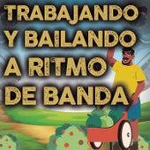 Trabajando Y Bailando A Ritmo De Banda by Various Artists