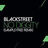 No Diggity (Sam Wilkes & Brian Green Sample Free Remix) von Blackstreet