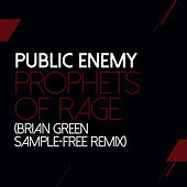 Prophets Of Rage (Brian Green Remix) by Public Enemy