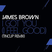 I Got You (I Feel Good) (TinCup Remix) von James Brown
