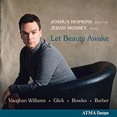 Let Beauty Awake by Various Artists