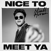 Nice To Meet Ya di Niall Horan