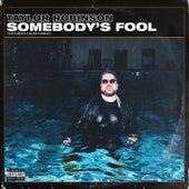 Somebody's Fool de Taylor Robinson