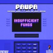 Insufficient Funds  (feat. IAMSU!, Ty Malik & Gudda Brvckin) von Paupa