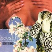 Hoeshit (Finch Fetti Remix) [feat. Ash & Aura Jade] de Finch Fetti