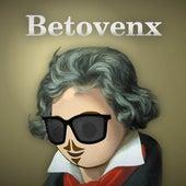Betovenx by Fer Palacio