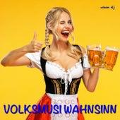 Volksmusi Wahnsinn de Wiesn DJ