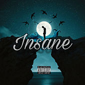 Insane (Extended Version) de Young Little Clout