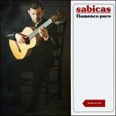Flamenco Puro (Album of 1961) de Sabicas
