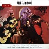 Viva Flamenco! (Album of 1961) de Dolores Vargas Sabicas