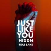 Just Like You de HIDDN