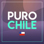 Puro Chile de Various Artists