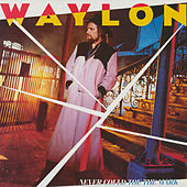 Never Could Toe the Mark de Waylon Jennings