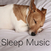 Sleep Music de Various Artists