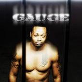 Street Heat Official Mixtape Vol 1 von Gauge