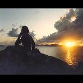 Seaside Serenade by Dr. Bob