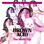 Brown Acid - The Ninth Trip de Various Artists