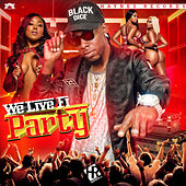 We Live Fi Party by Black Dice
