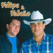 Felipe e Falcão, Vol. 8 de Felipe e Falcão