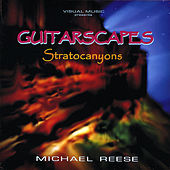 Guitarscapes  / Stratocanyons by Michael Reese