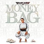 Money Bag by Planejane