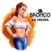 La Celosa de Bronco