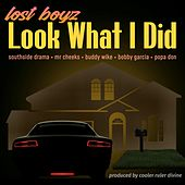 Look What I Did by Lost Boyz